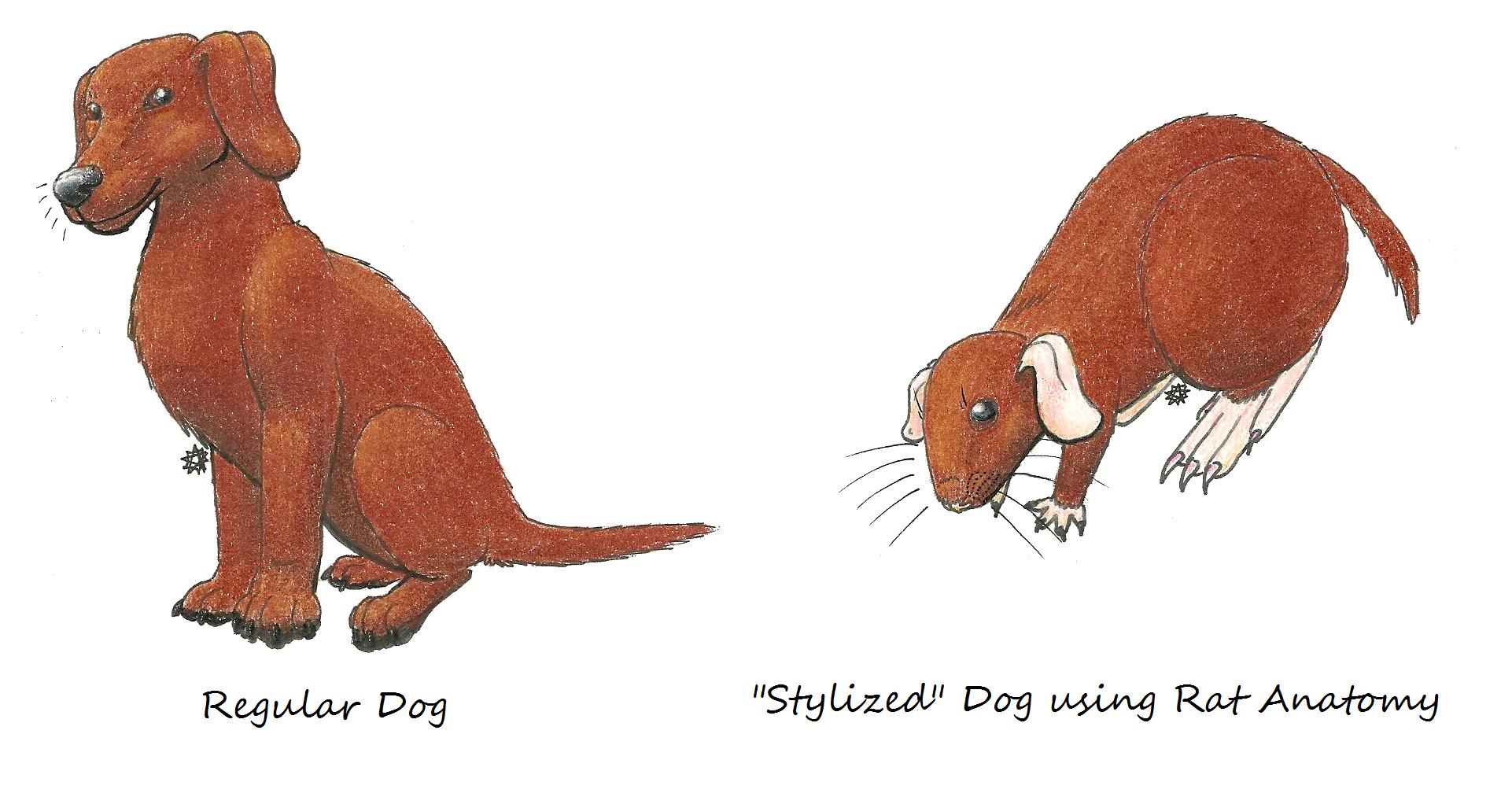 Dog with Rat Anatomy — Weasyl