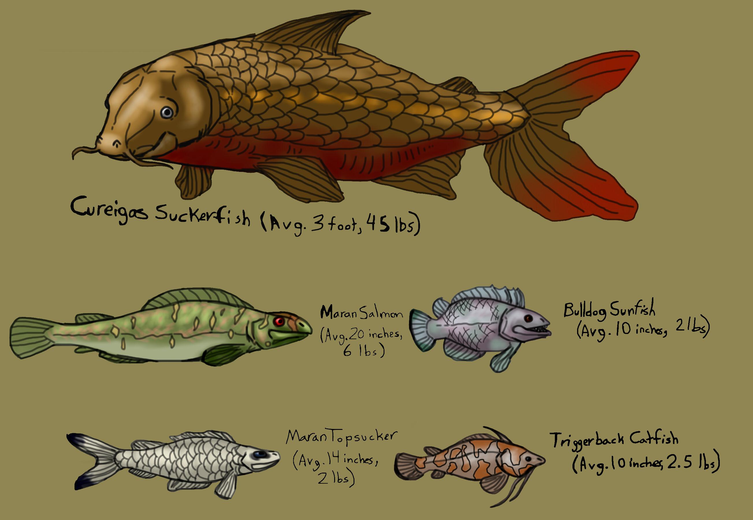 Large fish species of mara isle weasyl for Fish representative species