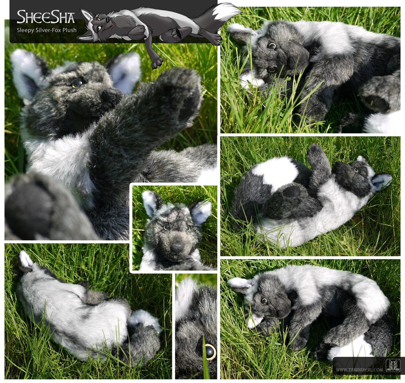 Silver Fox Stuffed Animal, Sheesha The Silver Fox Plush Weasyl