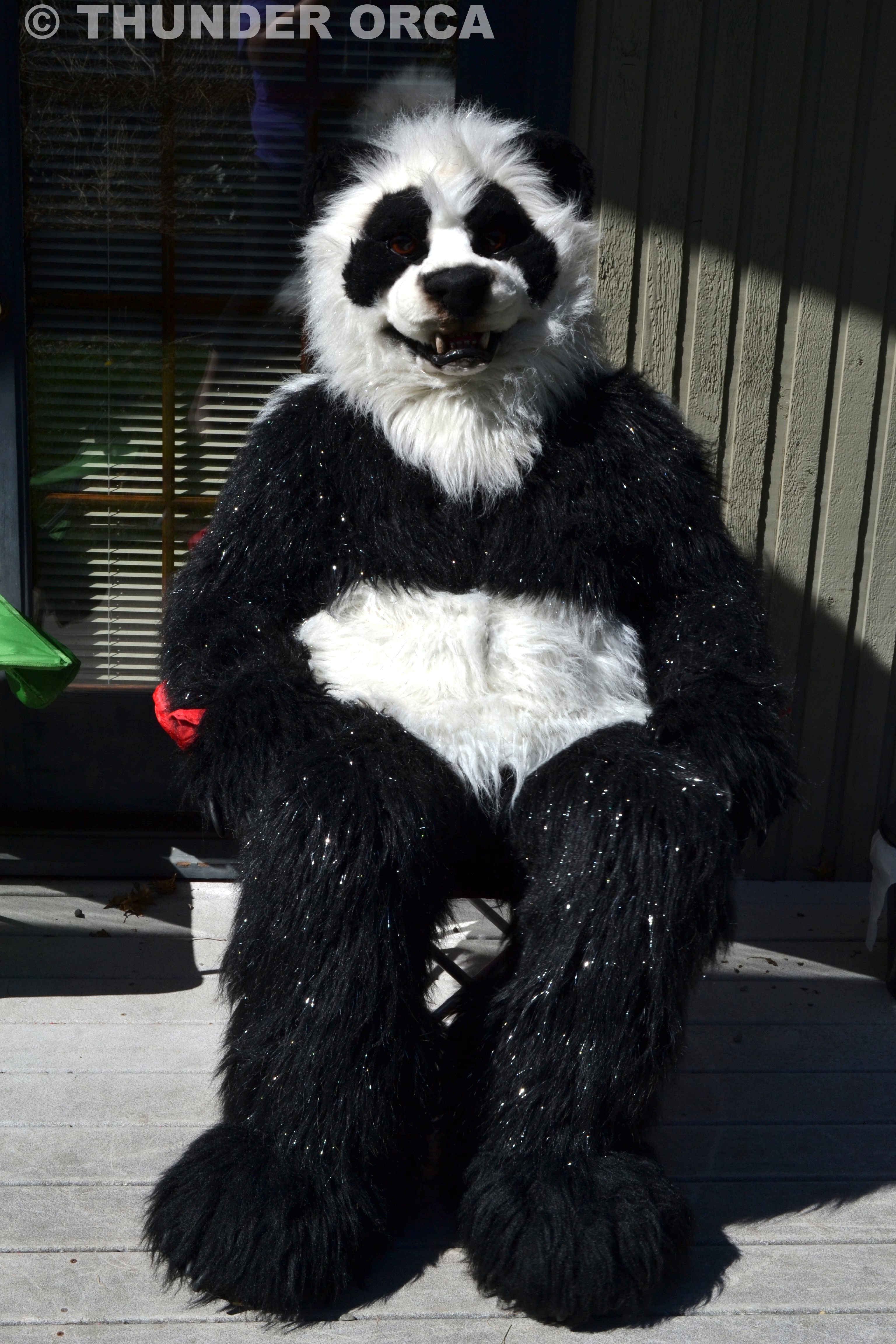 Fursuit Panda my panda fursuit. ^_^ — weasyl