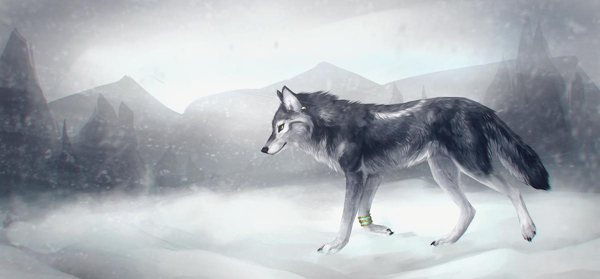 Картинки светлых волков